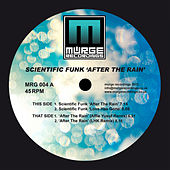 After the Rain by Scientific Funk