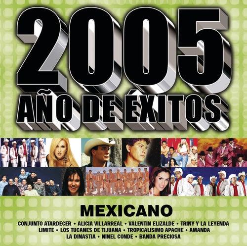 2005 Año De Exitos Mexicano by Various Artists