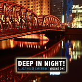 Deep in the Night! A Jazz House Experience von Various Artists