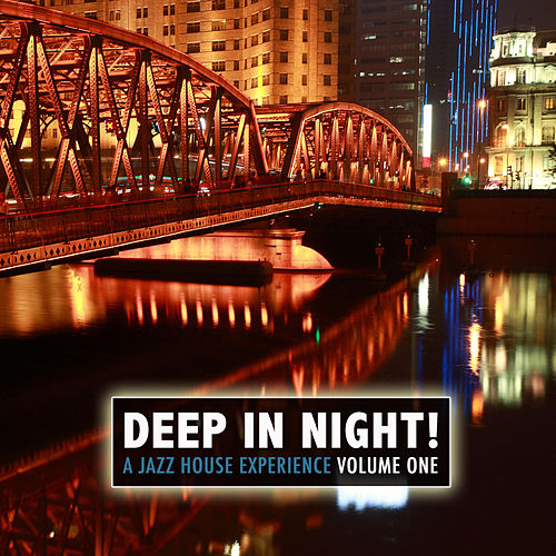 Deep in the Night! A Jazz House Experience by Various Artists