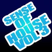 Sense of House, Vol. 3 von Various Artists