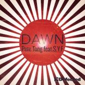 Dawn (feat.  S.Y.F) van Pete Tong