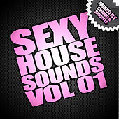 Sexy House Sounds Vol 1 (Mixed By Swing & Shuffle) de Various Artists