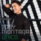Unico de Joey Montana