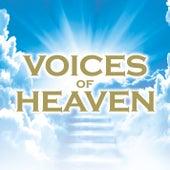 Voices of Heaven de Various Artists