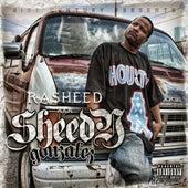 Sheedy Gonzales by Rasheed