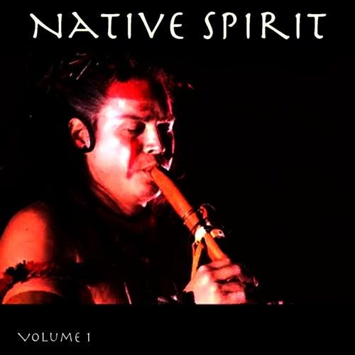 Native Spirit, Vol. 1 by Hollywood Symphony Orchestra