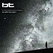 If the Stars Are Eternal So Are You and I by BT