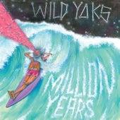 Million Years by Wild Yaks