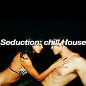 Seduction: Chill House by Various Artists