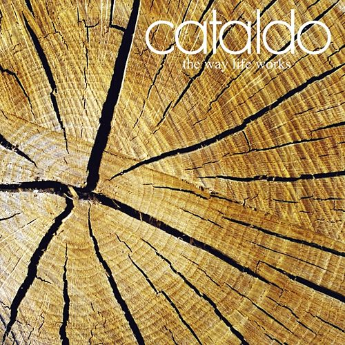The Way Life Works by Cataldo