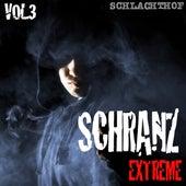 Schranz Extreme Vol. 3 - The Hardtechno Revolution by Various Artists