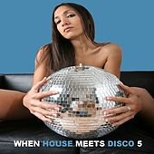 When House Meets Disco Vol. 5 by Various Artists