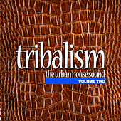 Tribalism Vol.2 - The Urban House Sound by Various Artists