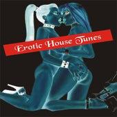 Erotic House Tunes von Various Artists