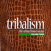 Tribalism Vol.3 - The Urban House Sound by Various Artists