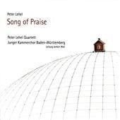 Peter Lehel: Song of Praise de Various Artists