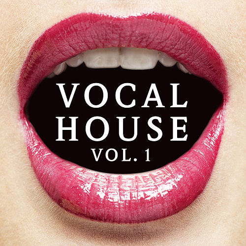 Vocal House Vol. 1 by Various Artists
