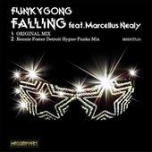 Fallin de Funky gong