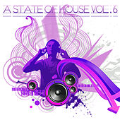 A State Of House Vol. 6 by Various Artists