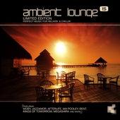 Ambient Lounge, Vol. 15 von Various Artists