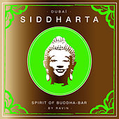 Siddharta, Spirit of Buddha-Bar Vol. 6 by DJ Ravin