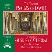 The Complete Psalms of David Volume 2 von Various Artists