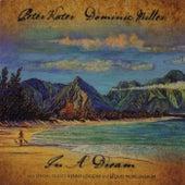 In A Dream de Peter Kater