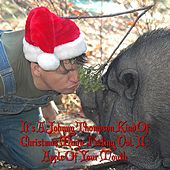 It's a Johnny Thompson Kind of Christmas Magic Feeling Vol. II: Apple of Your Mouth by Johnny