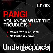 You Know What The Trouble Is ? - Single von Pang