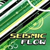 Seismic Flow de Various Artists