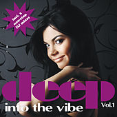 Deep Into The Vibe Vol. 1 (incl. 2 non-stop DJ mixes) by Various Artists