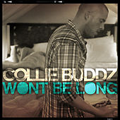 Won't Be Long - Single de Collie Buddz