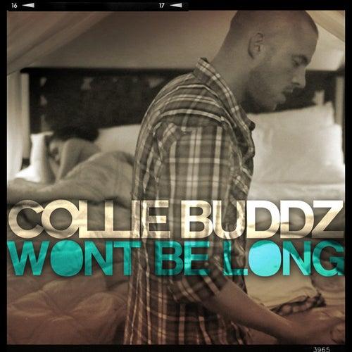 Won't Be Long - Single by Collie Buddz