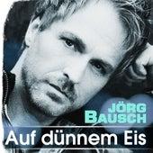 Auf dünnem Eis von Jörg Bausch