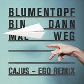 Bin dann mal weg (Cajus - Ego Remix) de Blumentopf