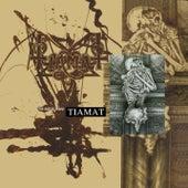The Astral Sleep (re-issue + Bonus Tracks) by Tiamat