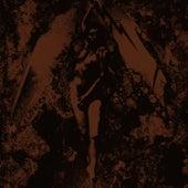 Converge / Napalm Death Split von Napalm Death