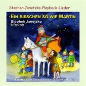 Ein bisschen so wie Martin by Various Artists