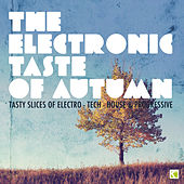 The Electronic Taste of Autumn - Tasty Slices of Electro-Tech-House & Progressive de Various Artists