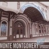 Live At The Caravan Of Dreams by Monte Montgomery