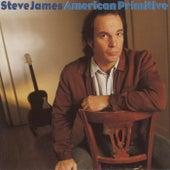 American Primitive by Steve James