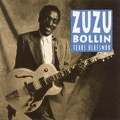 Texas Bluesman de Zu Zu Bollin