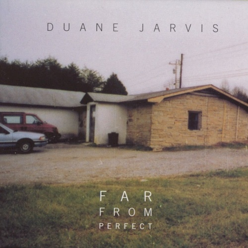 Far From Perfect by Duane Jarvis