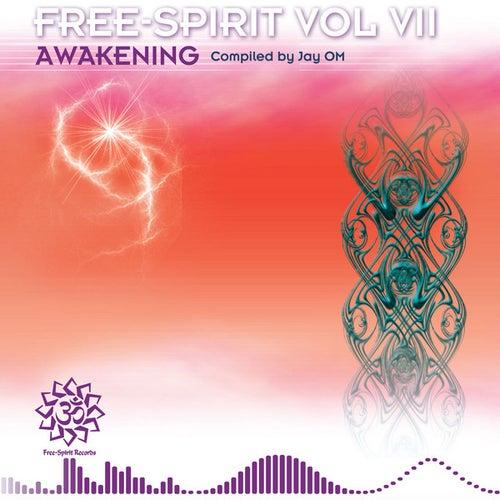 Free-Spirit Vol VII 'Awakening' by Various Artists
