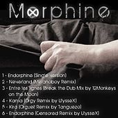 Endorphine (Maxi Single) by Morphine