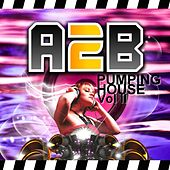 Pumping House Vol II by Various Artists