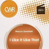 I Like It Like That by Marcus Gauntlett