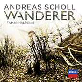 Wanderer by Various Artists