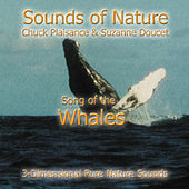 Song Of The Whales by Suzanne Doucet & Chuck Plaisance